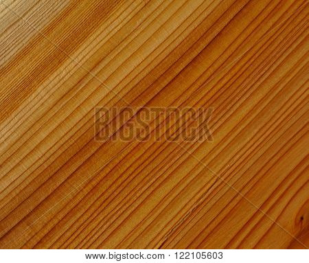 close up of yew wood grain texture
