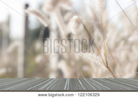 poaceae flower meadow field (blur background and wooden table for displaying your product)