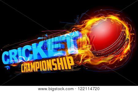 illustration of fiery cricket ball for Cricket Championship