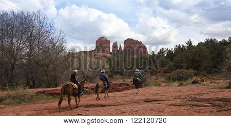 SEDONA, ARIZONA, MARCH 7. Red Rock Crossing on March 7, 2016, near Sedona, Arizona. Three cowboys ride mules toward famous Cathedral Rock at Red Rock Crossing near Sedona Arizona.
