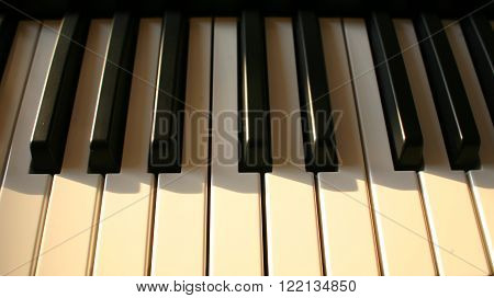 Piano keyboard (piano  digital piano closeup view)