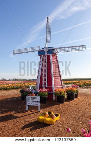 The Wooden Shoe Tulip Farm