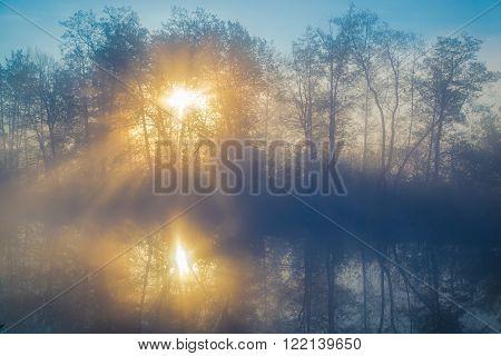 Morning fog on a lowland river in forest, tranquil scene. Vorskla river, Ukraine