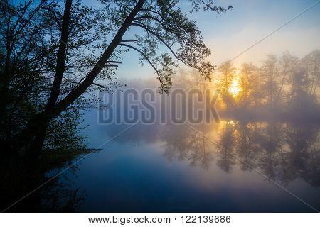 Morning fog on a river in forest, tranquil scene. Vorskla river, Ukraine