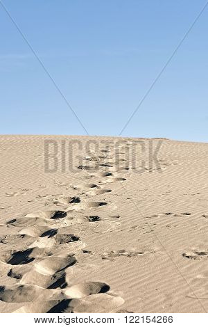 footprints in the sand up of a hill