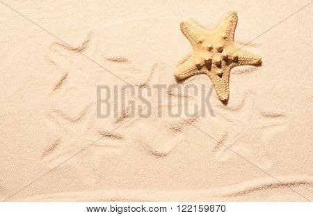 Starfish and marks of starfish on sand. Summer beach background. View from above