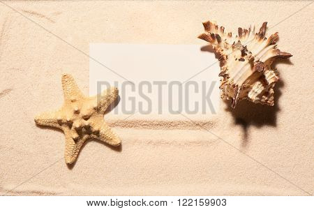 Blank White Visit Card With Starfish And Seashell On Sand