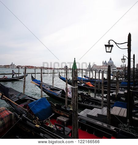 Gondolas At Moorings