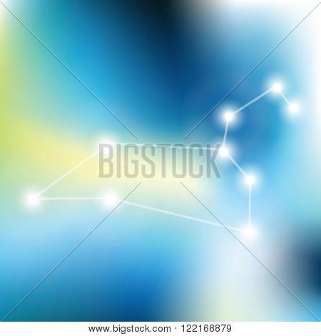 Leo Zodiac sign stars in cosmos