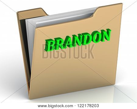 BRANDON- bright green letters on gold paperwork folder on a white background