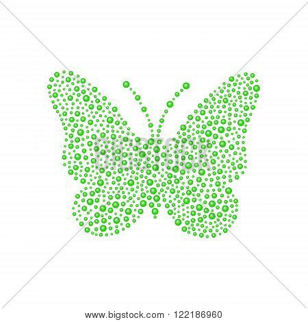 Butterfly in green design on white background