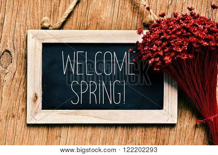 closeup of a framed blackboard with the text welcome spring written in it and a bunch of red small flowers against a rustic wooden surface