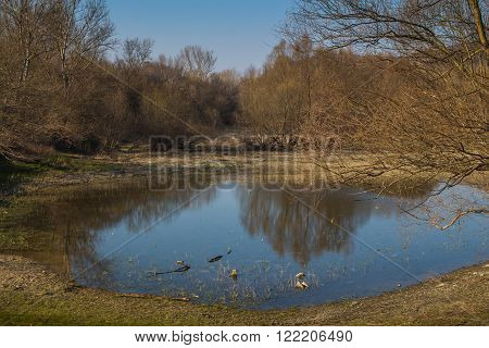 Round shape of a lake reflecting blue sky in the late afternoon. Trees around still without leaves in the early spring. Devin Bratislava Slovakia.