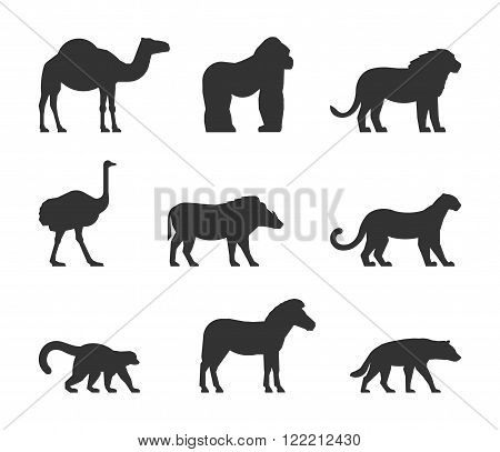 Vector black set of silhouettes african animals. Figure dromedary gorilla and lion. Icon ostrich warthog and leopard. Silhouette zebra lemur and hyena. Figure african animals isolated.