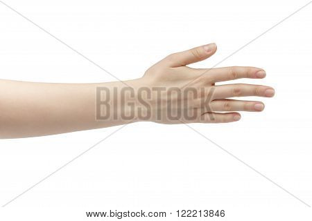 young woman right hand counting five isolated  on a white isolated background