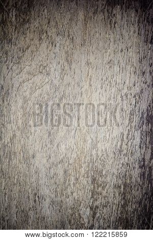 Abstract, Texture wood pannels on wall background