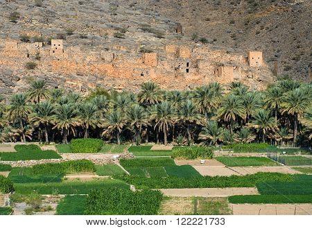 Wadi Ghul - canyon in sultanate Oman, village