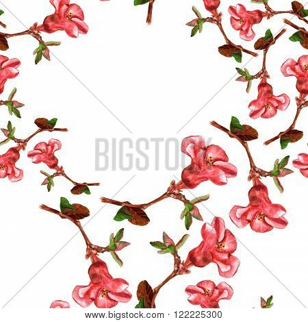 A seamless background pattern with watercolor drawings of blossoming red flowering quince