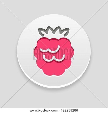 Raspberry icon. Fruit vector illustration eps 10