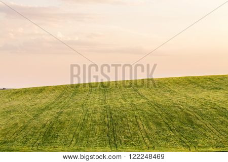 Beautiful shot of green mown field and sunset sky.