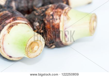 image of closeup of taro on white background