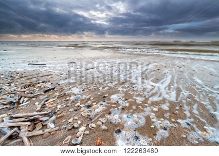 North sea waves on sand coast Zandvoort Netherlands