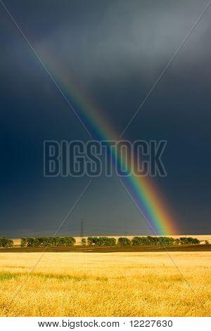 wheat field and rainbow on dark cloudy sky