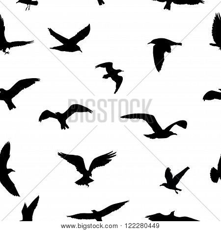 Seamless Pattern Of Flying Birds Silhouettes On White Background. Vector Illustration