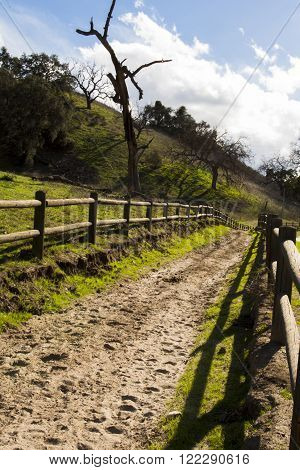 A well traveled trail covered with footprints and hedged in by a wooden fence