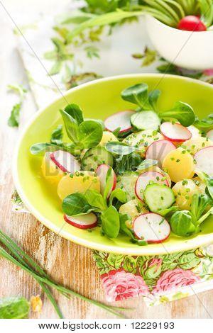 Neue Kartoffelsalat mit Radieschen und Gurken