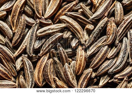 Extreme macro of dried cumin seeds. Top view