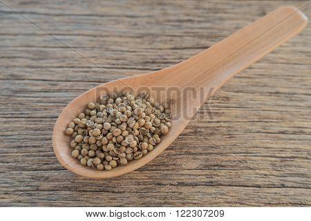 Coriander seeds in Wooden spoon placed on wooden floor.focus on coriander seeds.