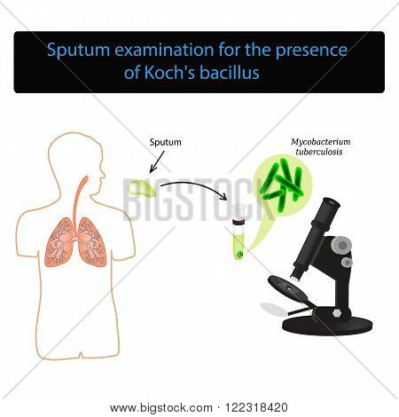 Sputum examination. World Tuberculosis Day. Infographics. Vector illustration on isolated background