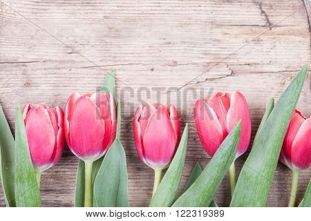 Bouquet of red tulips on a wooden background. Spring flowers. Mother's Day background.