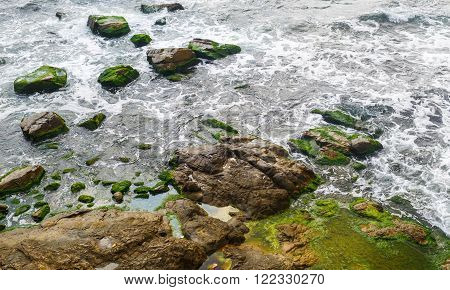 Close-up of sea surf. Rocky shore with sea water and large rocks covered with algae. Rocky coastline with sea water.