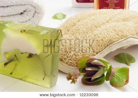 bath items including algae soap loofah towel and shampoo over white