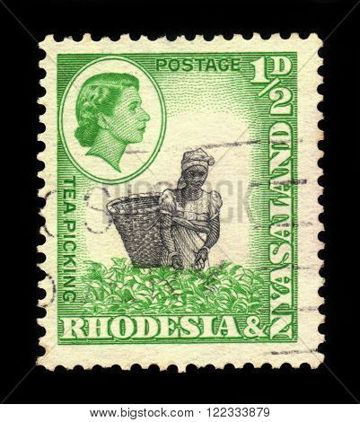 RHODESIA AND NYASALAND - CIRCA 1959: A stamp printed in Federation of Rhodesia and Nyasaland, also known as the Central African Federation (CAF) shows Queen Elizabeth II and tea picking, circa 1959