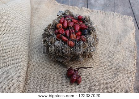 Basket of burdock seeds and rose hips on sacking background and wooden planks