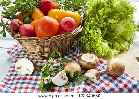 Fresh vegetables covered with water drops in basket. Organic Tomatoes pepper radishes dill parsley mushrooms champignonand vibrant green lettuce from the market.