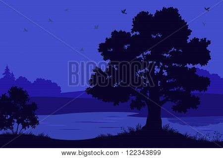 Night Landscape, Oak Tree Silhouettes, Bush and Grass on the Bank of Forest River. Vector