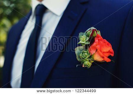Red Rose Flower Fresh Boutonniere On Stylish Dark Blue Suit Closeup
