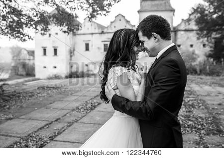 Beautiful Romantic Couple Of Newlyweds Hugging Near Old Castle & Tree B&w