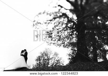 Fairytale Romantic Couple, Bride And Groom Hugging Near Tree B&w