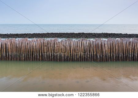 Sea tide bamboo stick barrier wall for protection coastline wave