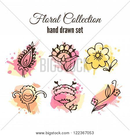 Vector floral decorative set. Colorful splashes under flower. Herbs and wild flowers. Abstract hand sketched floral collection. Cute flowers and leaves branches for invitation card.