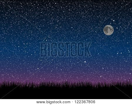 Silhouette of grass on a background of the starry dark blue sky.