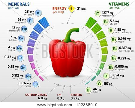 Vitamins and minerals of red bell pepper. Infographics about nutrients in capsicum fruit. Qualitative vector illustration about pepper vitamins vegetables health food nutrients diet etc. It has transparency blending modes masks blends