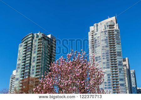 Modern apartment buildings iin downtown Vancouver BC Canada