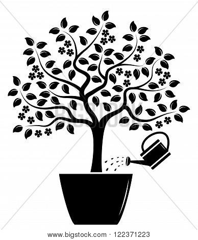 vector flowering tree in pot and watering can isolated on white background