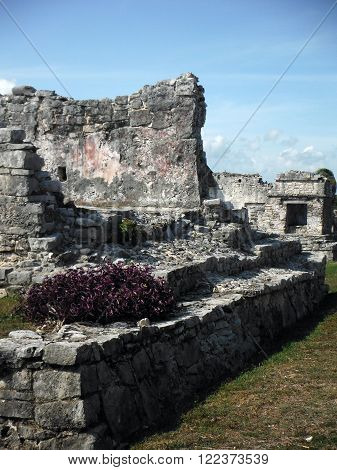 Mayan stone constructs including plants in the archeological site of Tulum on the Yucatán peninsula of Mexico.